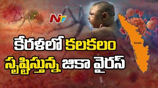 Zika Virus Outbreak in India,13 Cases Reported in Kerala l Ntv