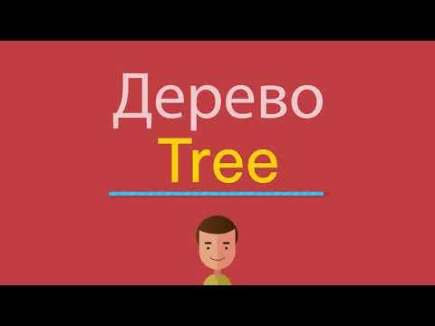 Как написать по английски дерево