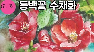 동백수채화.Camellia watercolor