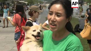 Activists stage performance to protest against dog meat consumption