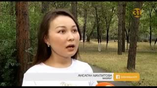 Жители Алматы просят перенести в другое место склад лакокрасочных изделий