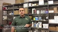 What NOT to do for Ants in Your Kitchen or Bathroom - Fayetteville Georgia Termite and Pest Control