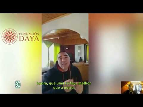 Entrevista com a Fundación Daya+Como é feita uma planta de CBD+Óleo medicinal com THC OU PURO CBD?