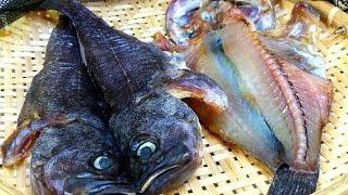 우럭 말리는 방법, 반건조 생선 보관하는 방법, 우럭젓…