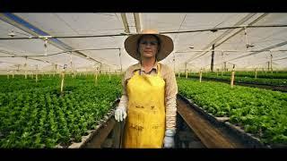 Flores Silvestres un ejemplo de negocio sostenible | El Espectador