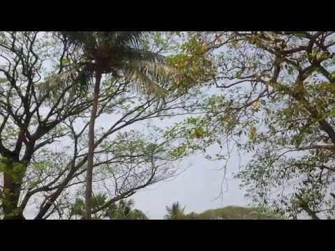 Drone made by Bangladesh