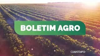 Boletim Agro - Geada e pouca chuva no Pais nesta semana