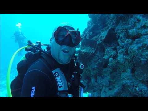 How Scuba Divers clean their Teeth