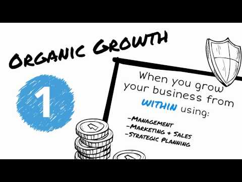Organic VS Inorganic Growth