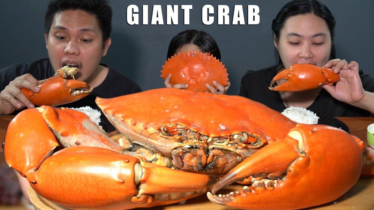 Download Outdoor Cooking Giant Mud Crab (Alimango) + Mukbang