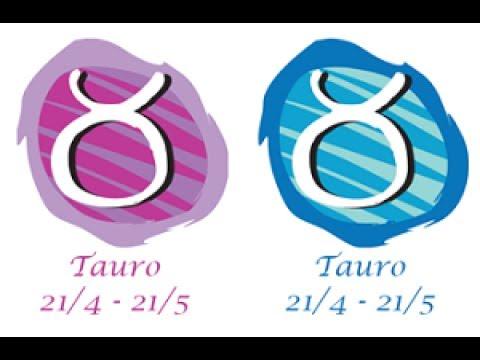 tauro y taurus son compatibles