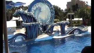 Blue Horizons at SeaWorld Orlando Part 1 2008