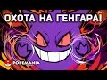 Охота на ГЕНГАРА! Целый ДИСПЛЕЙ - 36 бустеров ККИ Покемон   Карты Pokemon TCG