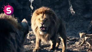 Kral Aslan Simba 2019 Whatsapp Durum ( King Lion Simba 2020 Whatsapp Status ) kral aslan türkçe full
