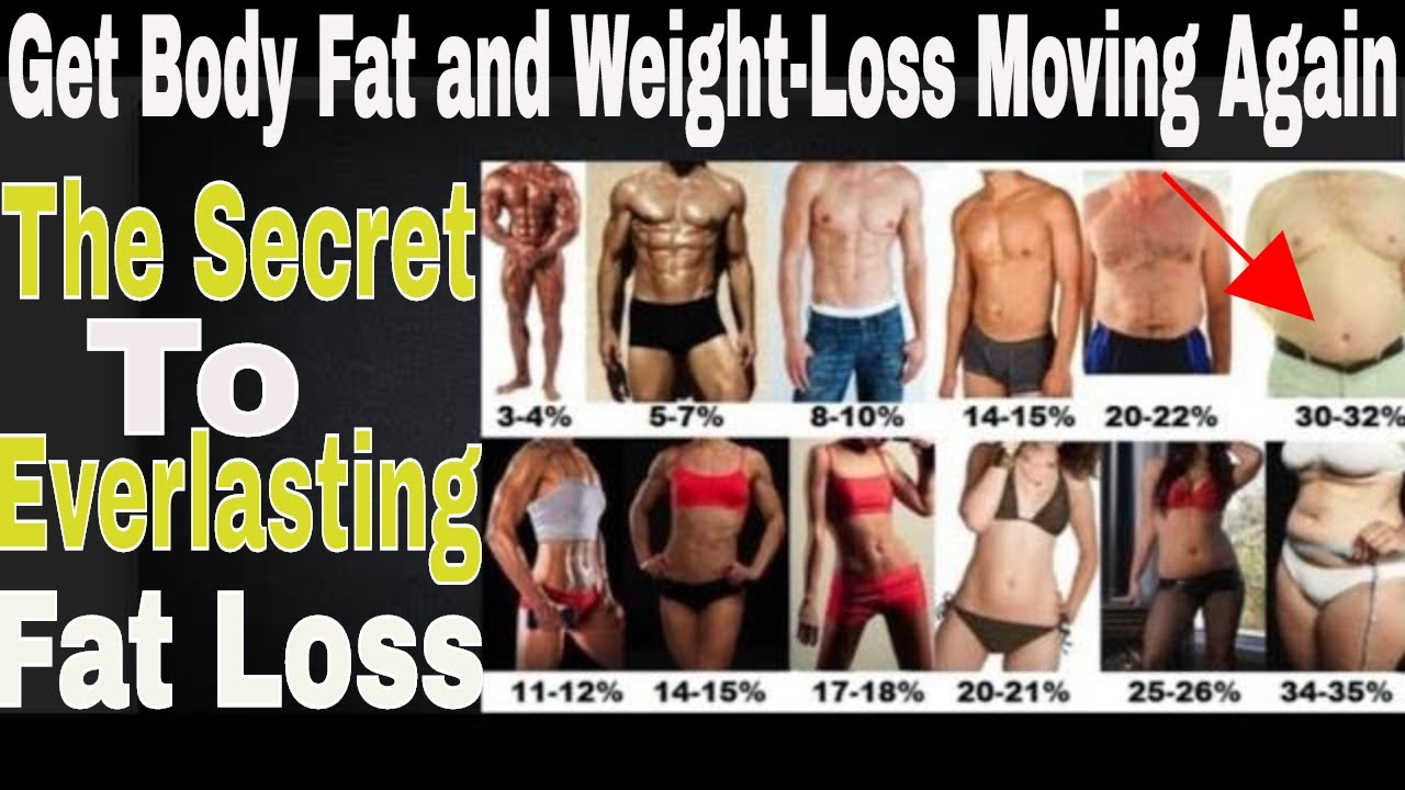 How to lose weight paleo diet