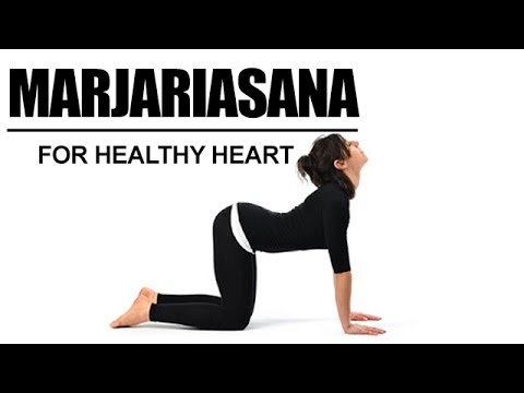 Image result for marjariasana