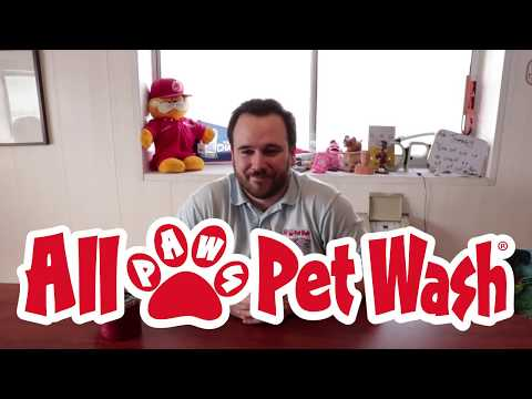 Self Serve Pet Washing Systems   Dog Bath & Grooming