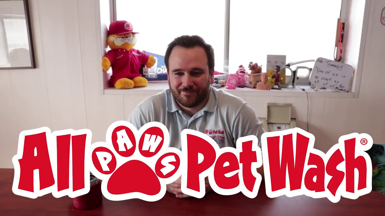 All paws pet wash youtube all paws pet wash solutioingenieria Images