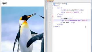 Программирование с нуля от ШП - Школы программирования Урок 8 Часть 5 Бесплатные курсы Курсы Пк