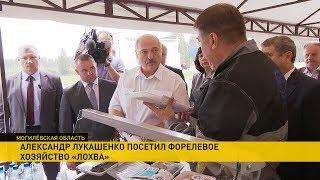 Лукашенко: это исторический день для юго-востока Могилёвской области!