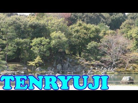 Tenryuji Temple in Cherry Blossom Season, Arashiyama Kyoto - 京都天龍寺 - Japan As It Truly Is