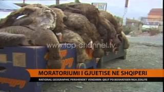 Moratoriumi i gjuetisë në Shqipëri  - Top Channel Albania - News - Lajme