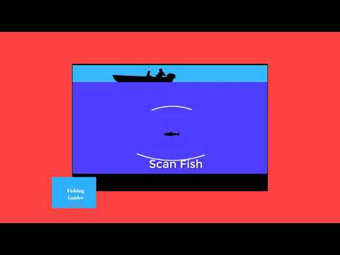 how to read a fish finder - Myhiton