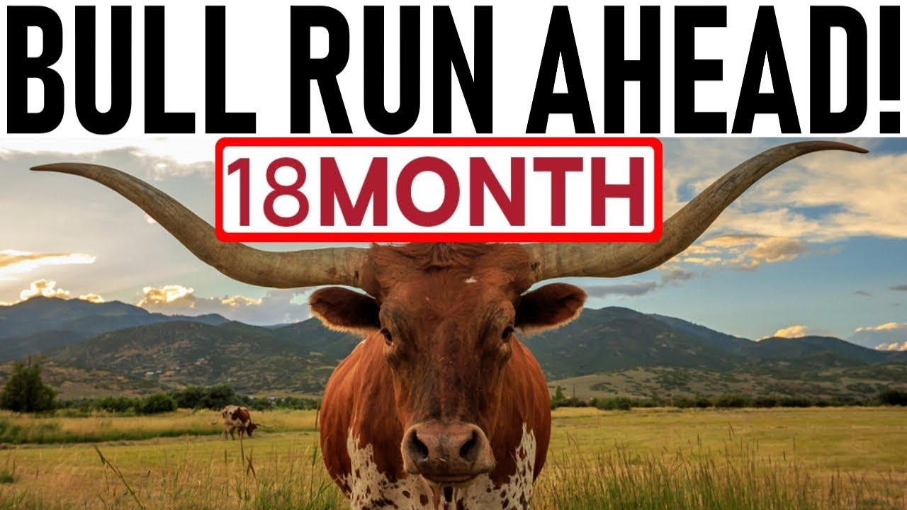 18 MONTH BULL RUN AHEAD! - RALLY JUST STARTED! - TRUMP POLICING CRYPTO! - PHANTOM MONEY PUMPING BTC! 8