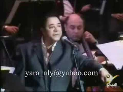 Medhat Saleh