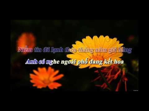 Chuyện Tình Không Dĩ Vãng - Đan Nguyên - Karaoke Vip