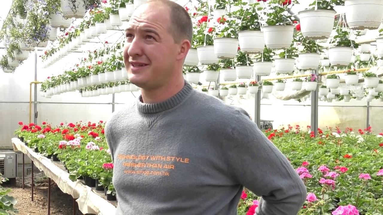 Interviu Ferencz Levente - horticultor Viișoara  (29.03.2019)