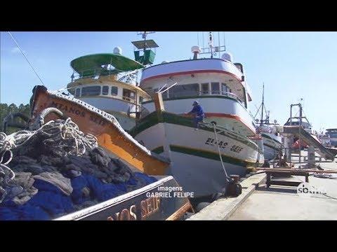 Treinamento de fiscais é iniciado para vistoria dos barcos de pesca