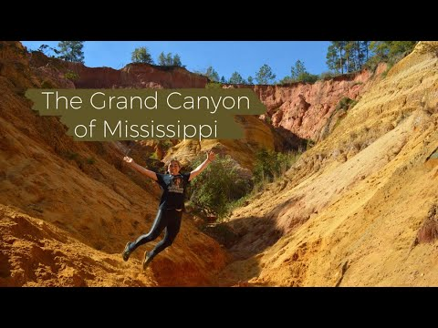 Red Bluff: The Grand Canyon of Mississippi