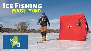 Ice Fishing Moose Pond