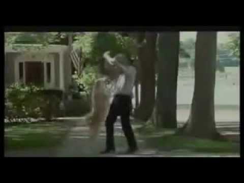 Descarga Siempre a tu lado Hachiko Español-HD