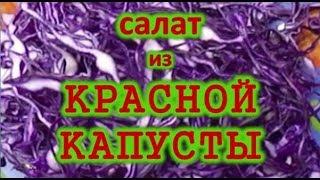 Салат из красной капусты. Рецепт. Низкокалорийный и полезный 100 гр.- 50ккал.