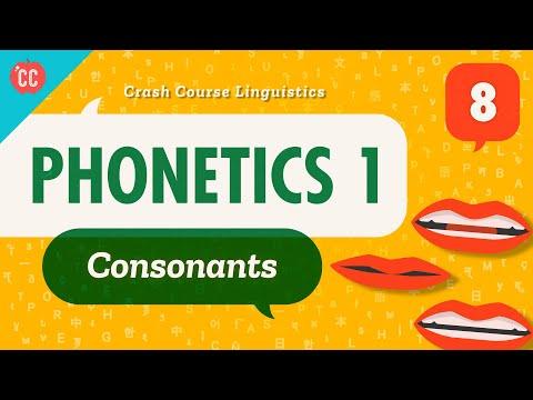 Crash Course Linguistics #8 - Phonetics 1 (Consonants)The...
