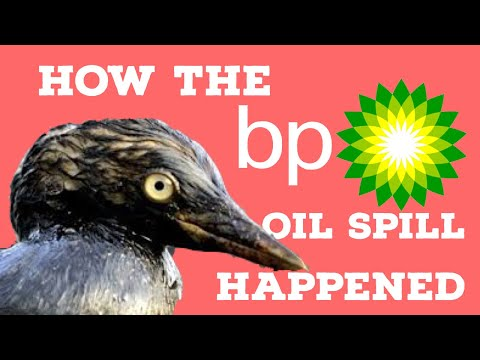 How the BP Oil Spill Happened 10 years on: The Deepwater Horizon Disaster