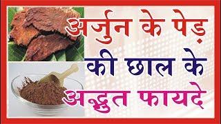 अर्जुन की छाल के फायदे  और नुकसान--- Benefits of Arjun ki Chaal IN HINDI