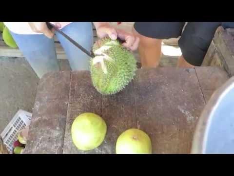 #BecomingFilipino - Fruit-Trip just outside Davao City
