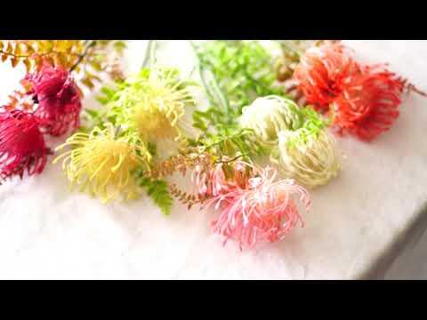 Leucospermum cordifolium, Artficial flowers,