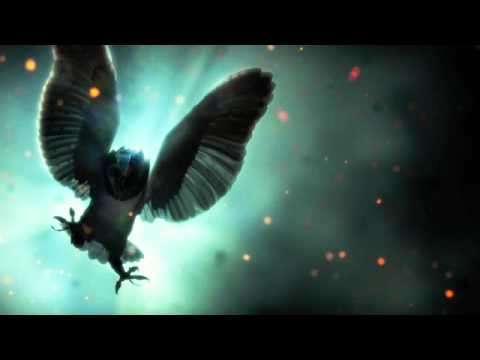 Legend of The Guardians Sountrack - 1.  The Flight Home (The Guardian Theme)