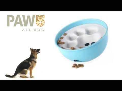 rock-'n-bowl-from-paw5