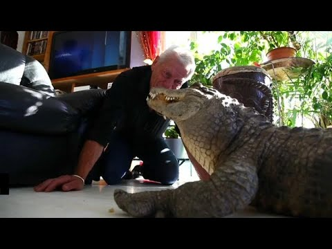 شاهد: فرنسي يعيش مع تماسيح وأفاعي و 400 حيوان آخر  - نشر قبل 32 دقيقة