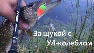 За щукой с УЛ-колеблом(Выбравшись на небольшой заросший водоем, я решил попробовать ловить щуку на УЛ-колебалки. Рыбалка вышла..., 2016-08-30T15:23:16.000Z)