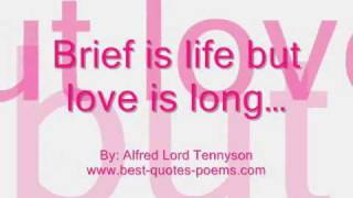 Famous Valentine Day Quotes & Sayings
