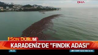 Tonlarca fındık denize aktı - Atv Haber 9 Ağustos 2018