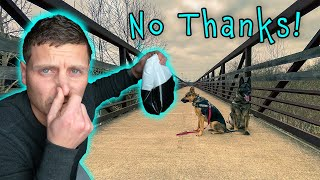 Why I Don't Pick Up After My Dog. Plus German Shepherd Christmas VLOG.