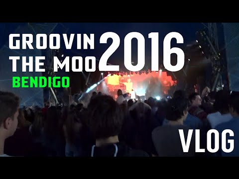 GROOVIN THE MOO BENDIGO VLOG