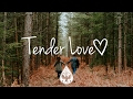 Tender Love ❤️ - An Indie/Folk/Pop Playlist